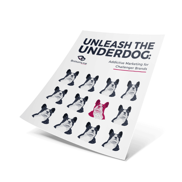 Unleash the Underdog Report Cover | We Lead You Evolution